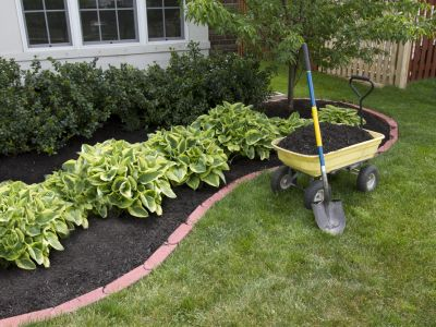Flower Bed Maintenance In Carrollton TX