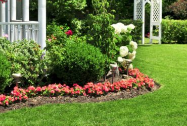 Landscaping & Bed Maintenance