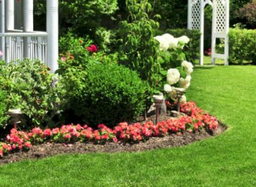 5 Reasons You Should Hire a Professional Landscaping Company