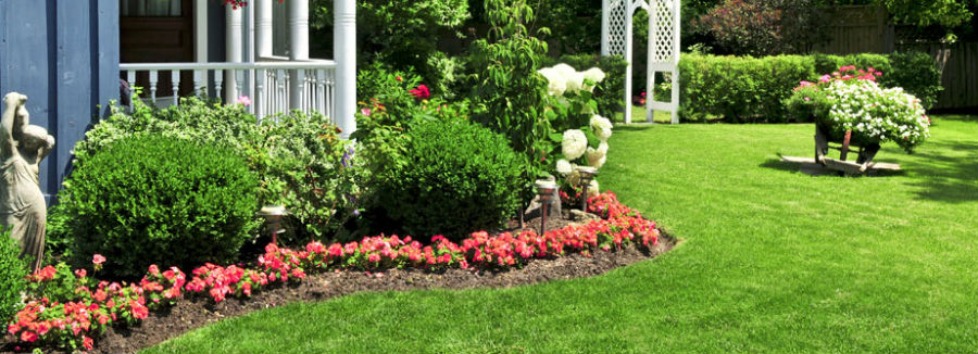 Lawn Landscaping and Bed Maintenance