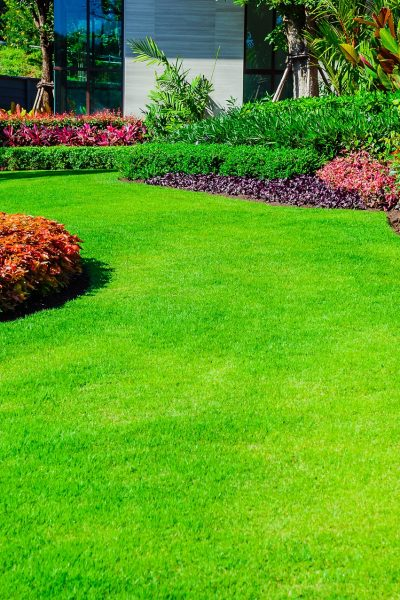 Lawn Maintenance in Oak Cliff Near Dallas