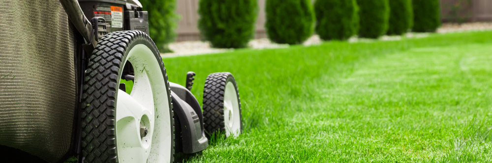 Dallas Lawn Maintenance Services