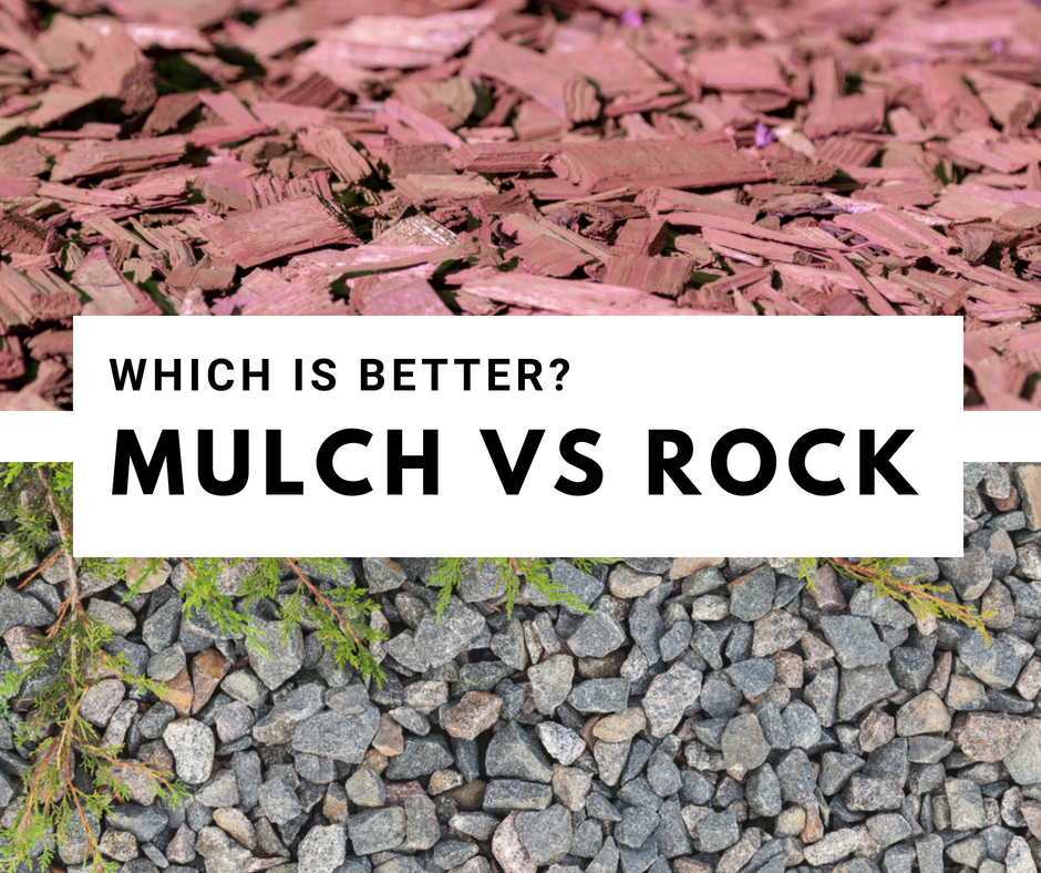 mulch vs rock landscaping