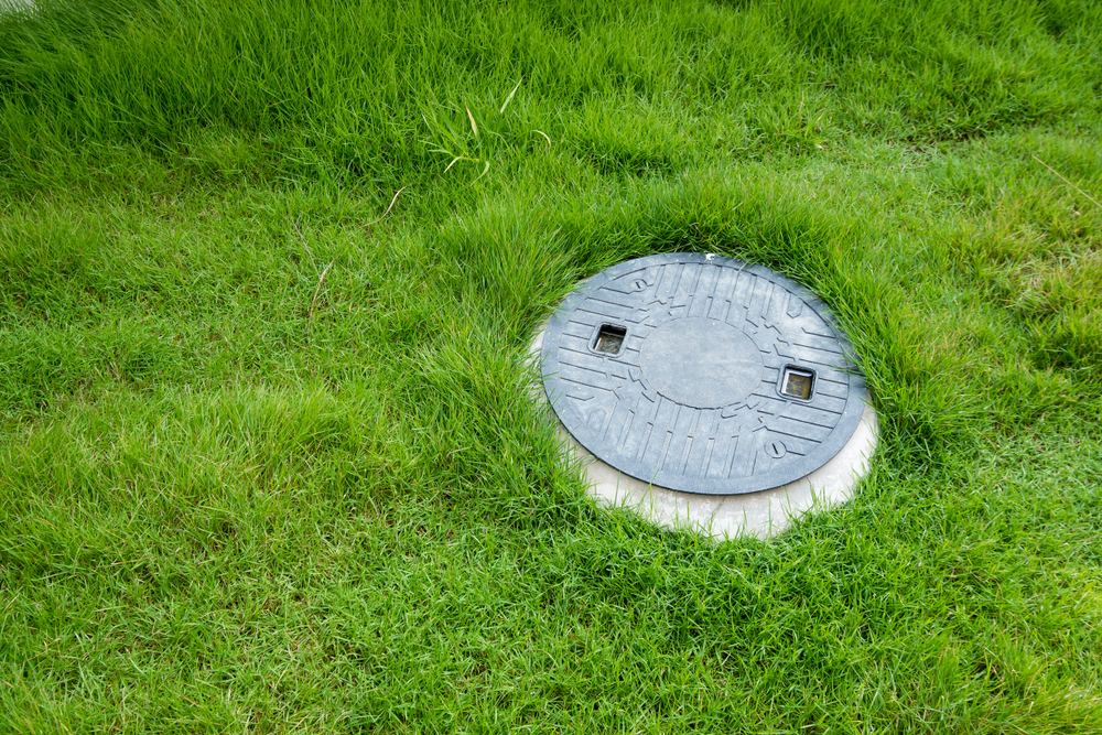 Septic System Landscaping